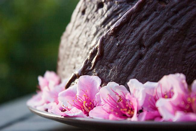 kahlua-cake-8