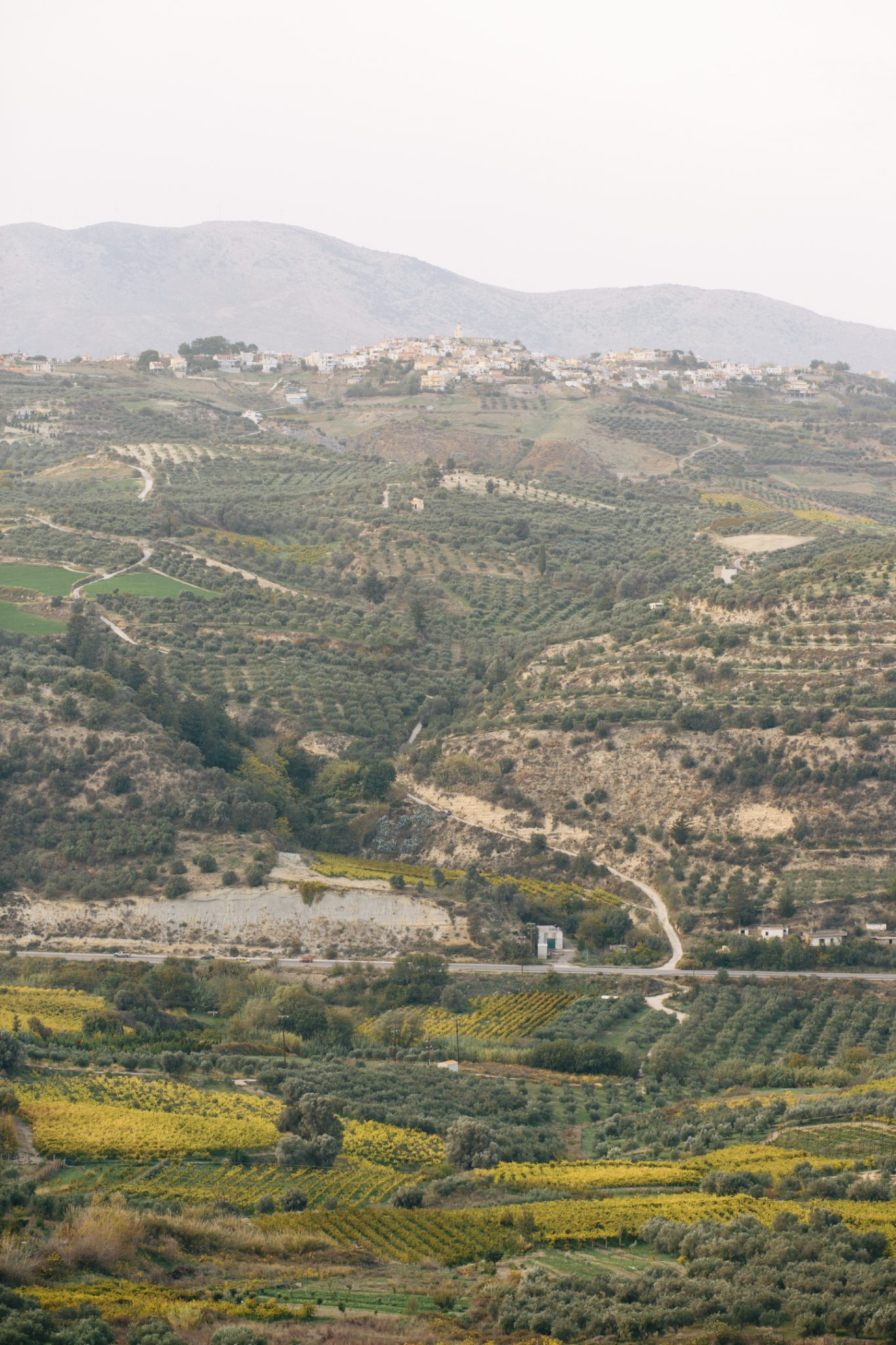 douloufakis-winery-crete-27