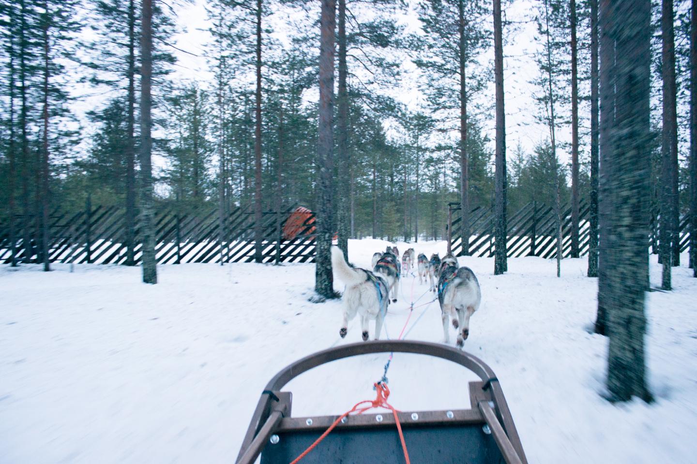 best-of-finland-5
