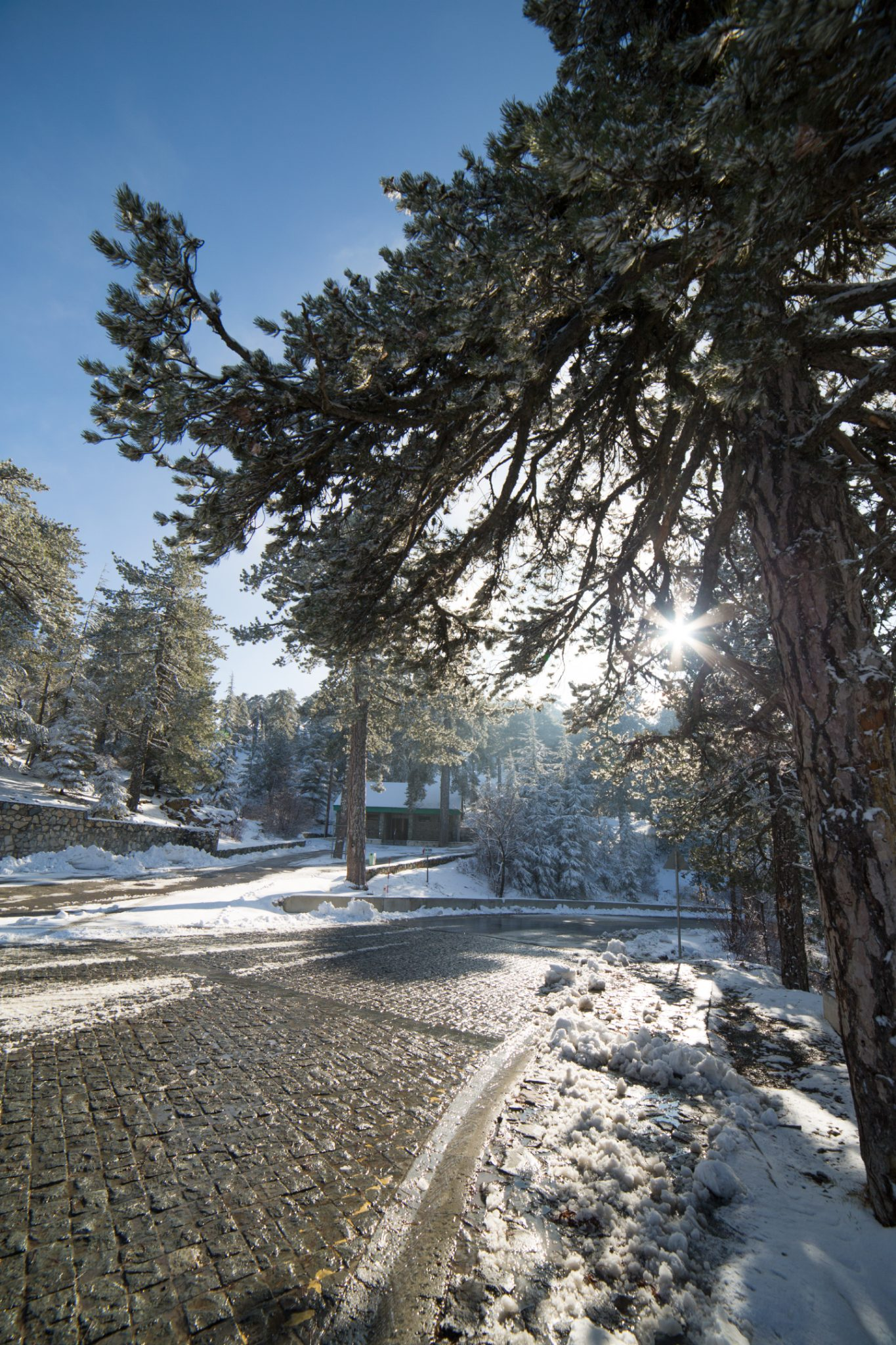 first-snow-troodos-cyprus-17