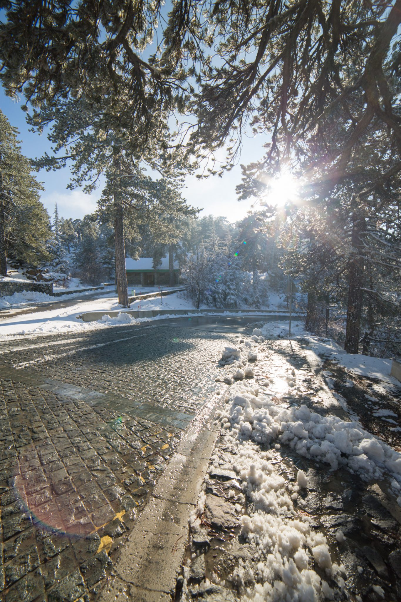 first-snow-troodos-cyprus-20