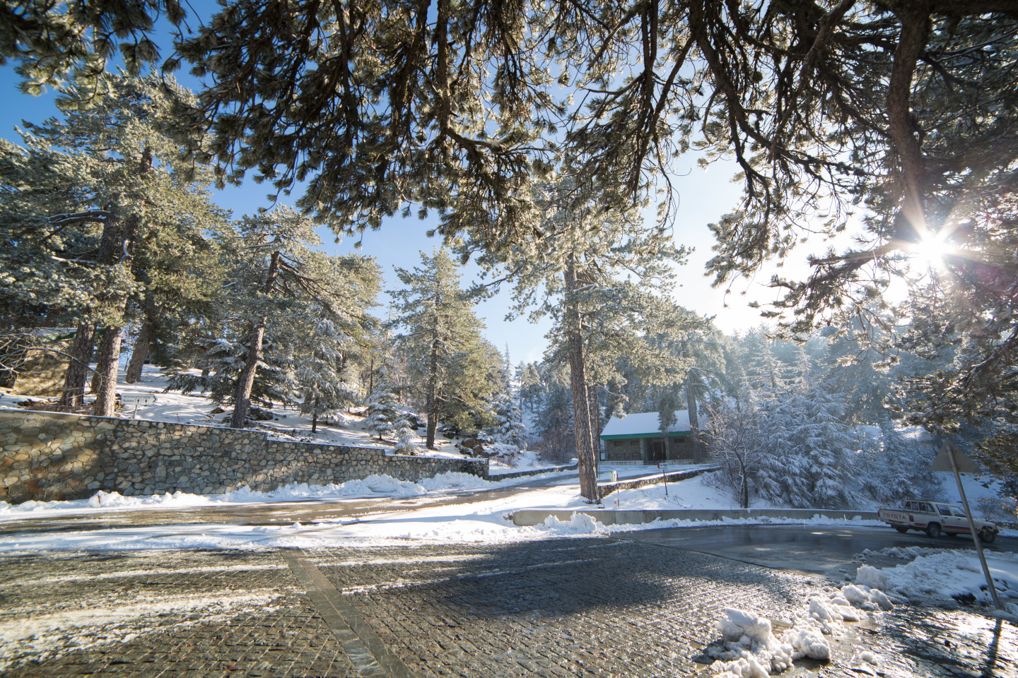 first-snow-troodos-cyprus-23