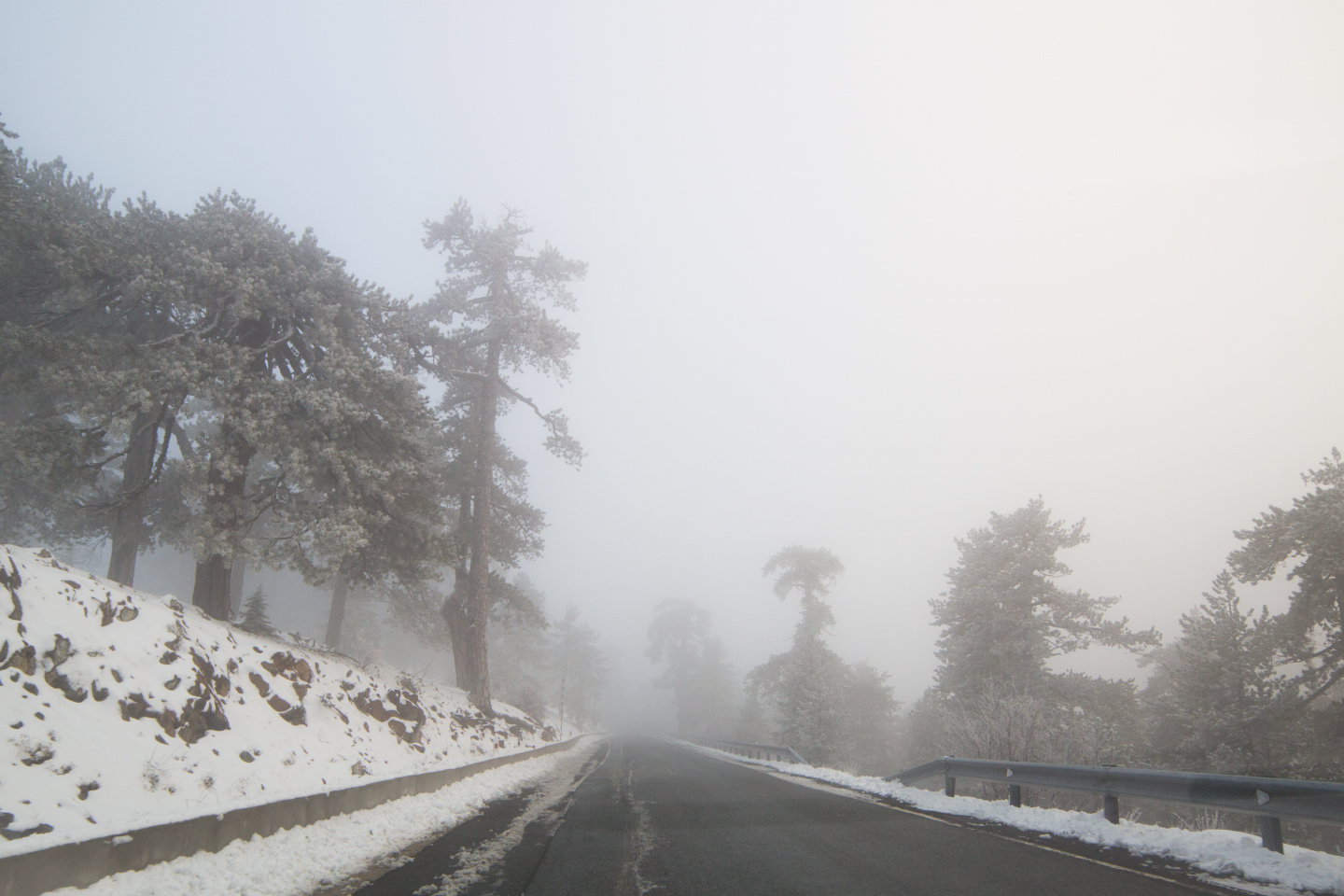 first-snow-troodos-cyprus-25