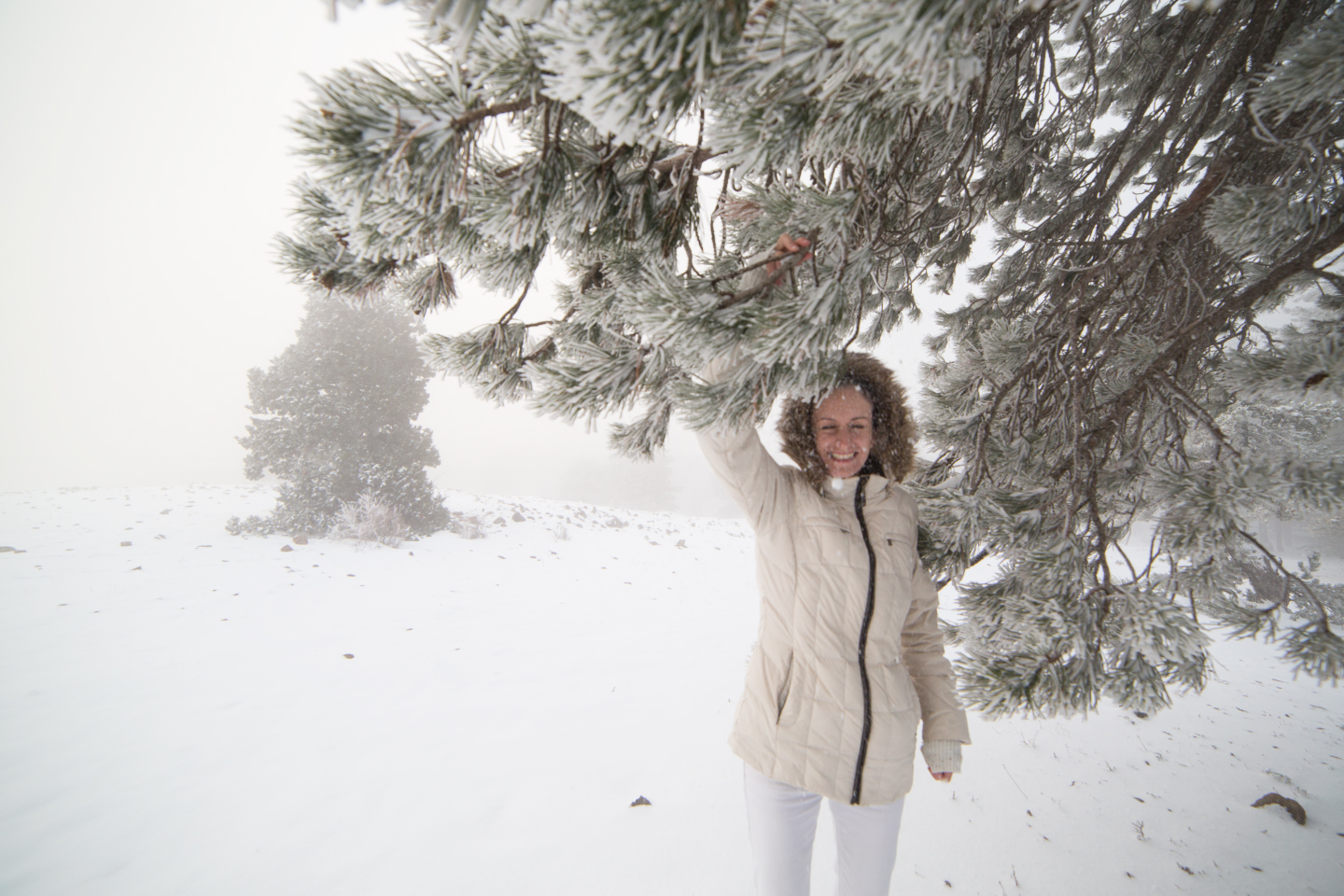 first-snow-troodos-cyprus-31