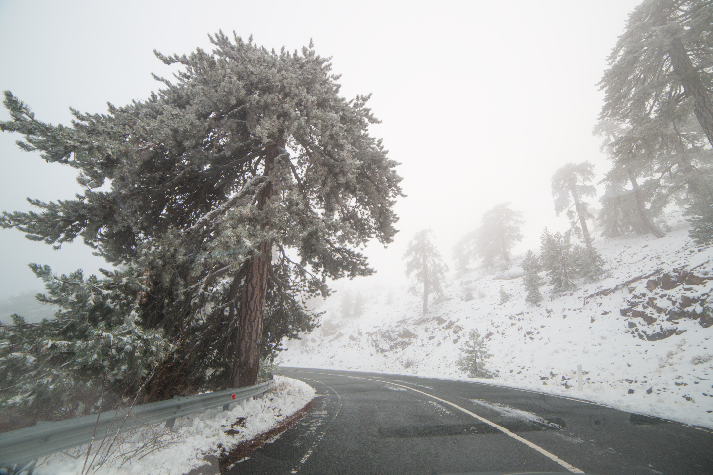 first-snow-troodos-cyprus-40