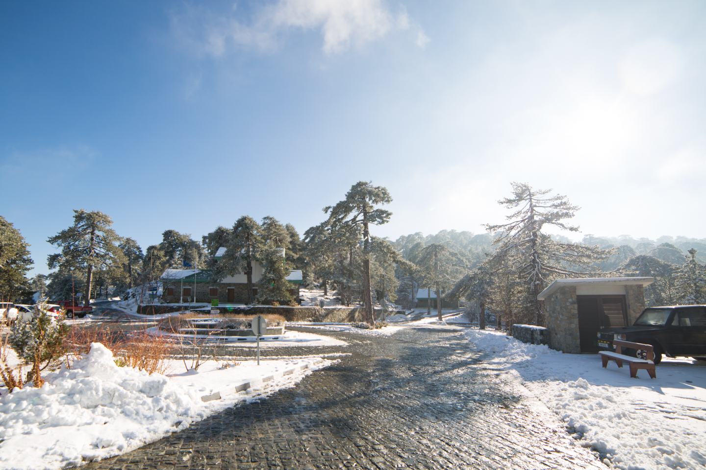 first-snow-troodos-cyprus-6