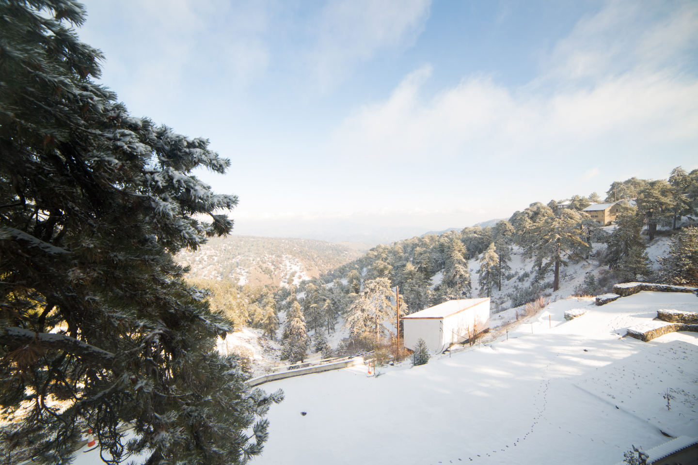 first-snow-troodos-cyprus-8