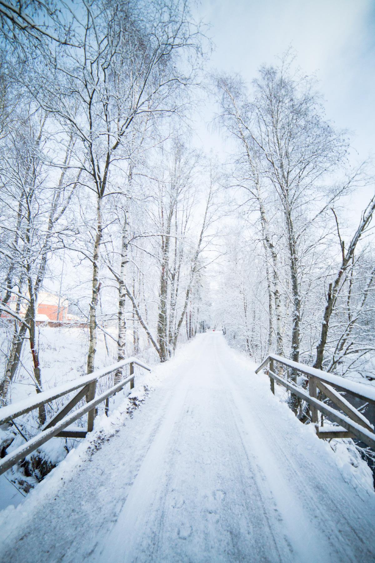 Snow Whisperer, Finland