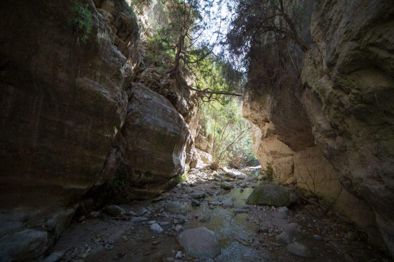 Avakas Gorge, Akamas Peninsula