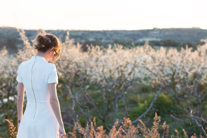 minthis hills, tsada - cyprus