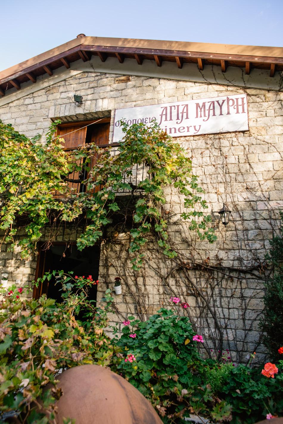 wineries cyprus