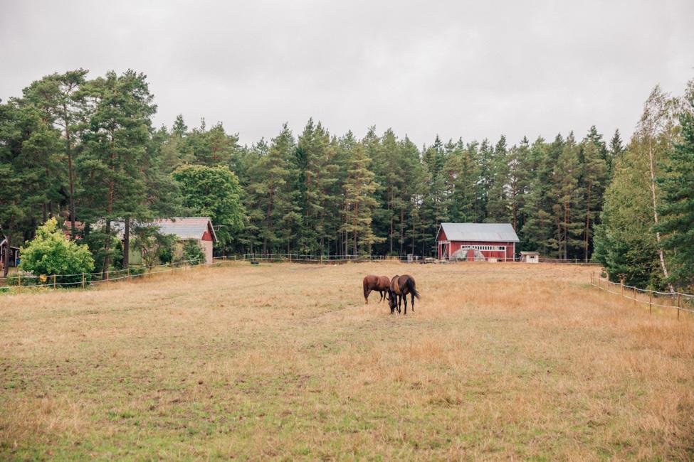 archipelago trail turku finland-0190