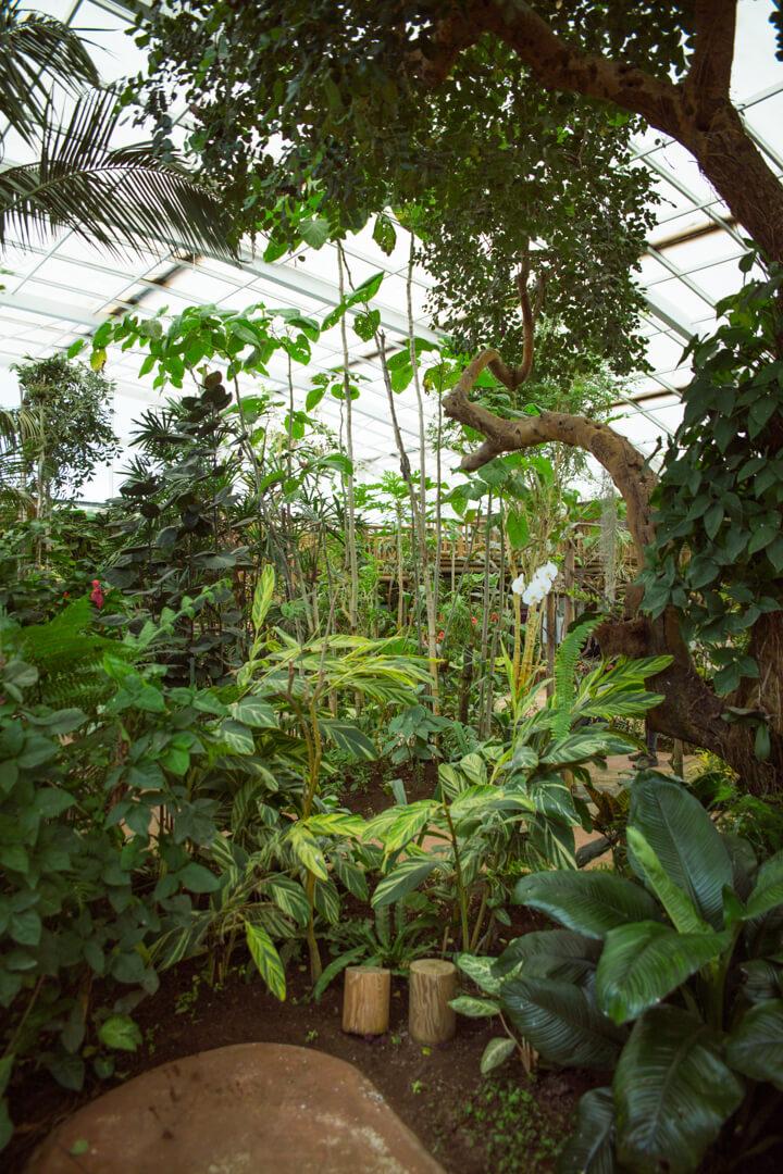 Mariposario de Benalmadena (Butterly Park)