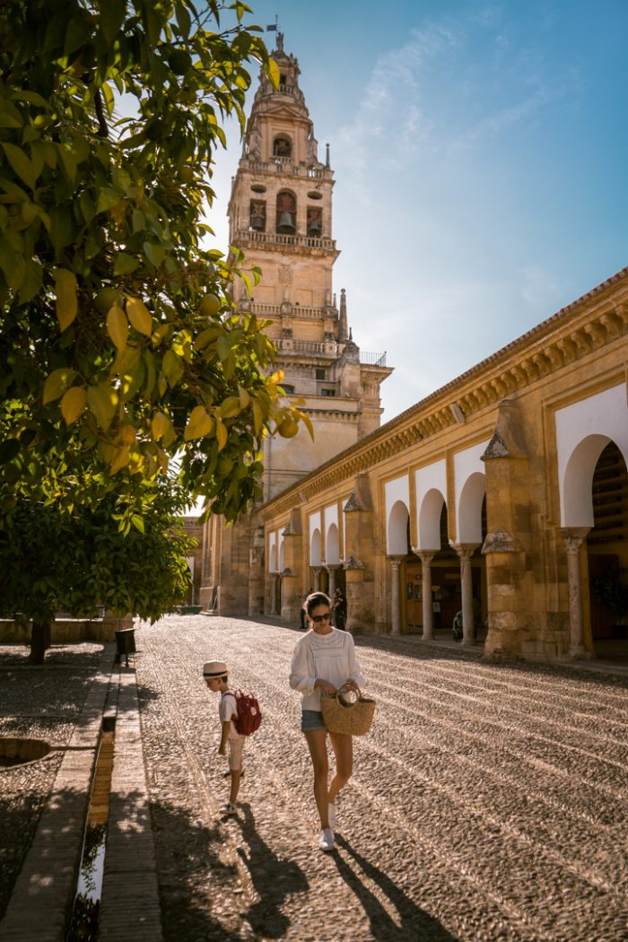 10+ Amazing Day Trips from Malaga
