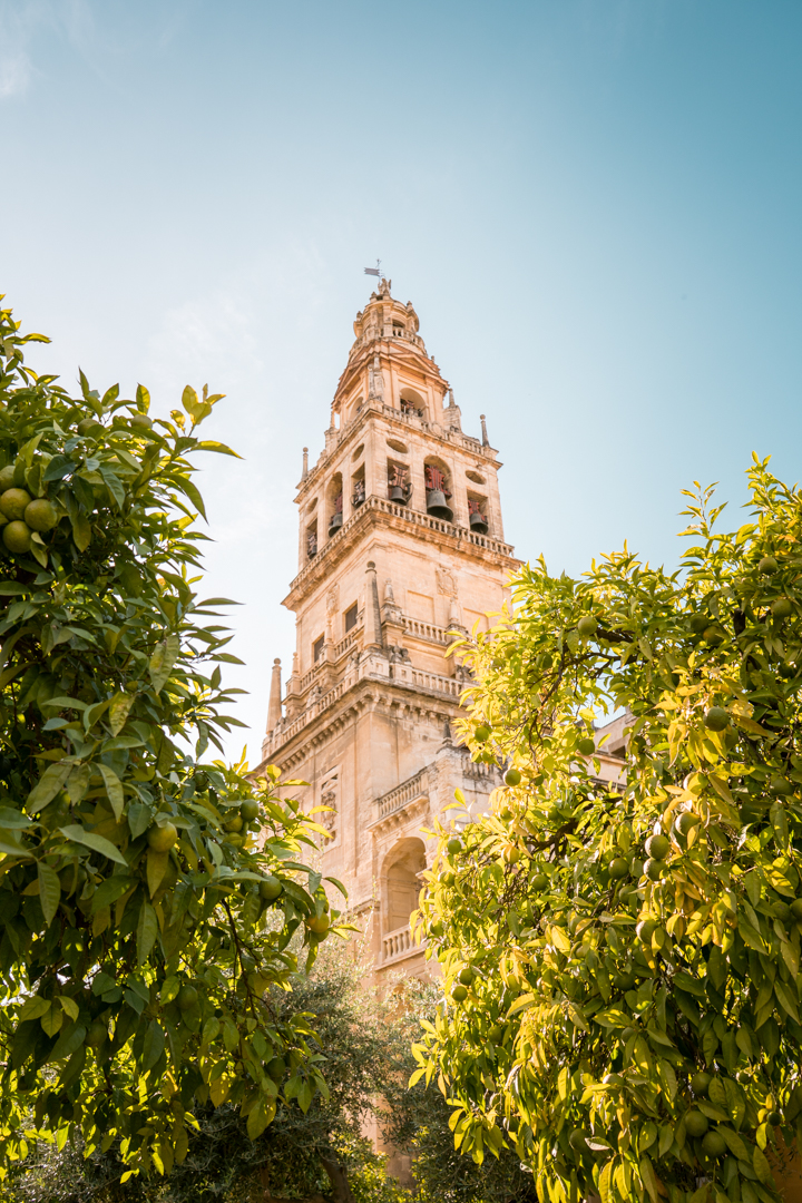Visiting the Mezequita Cathedral in Cordoba