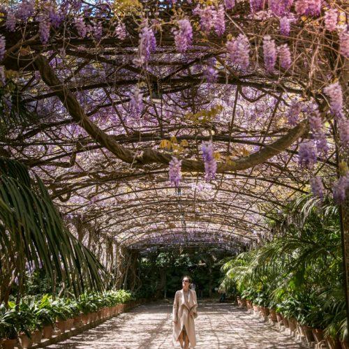 La Conception Botanical Garden Malaga (Jardin Botanico La Conception) Spain