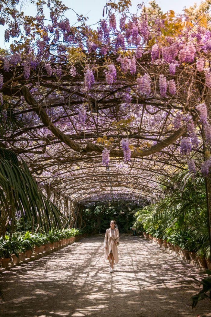 La Conception Botanical Gardens in Malaga