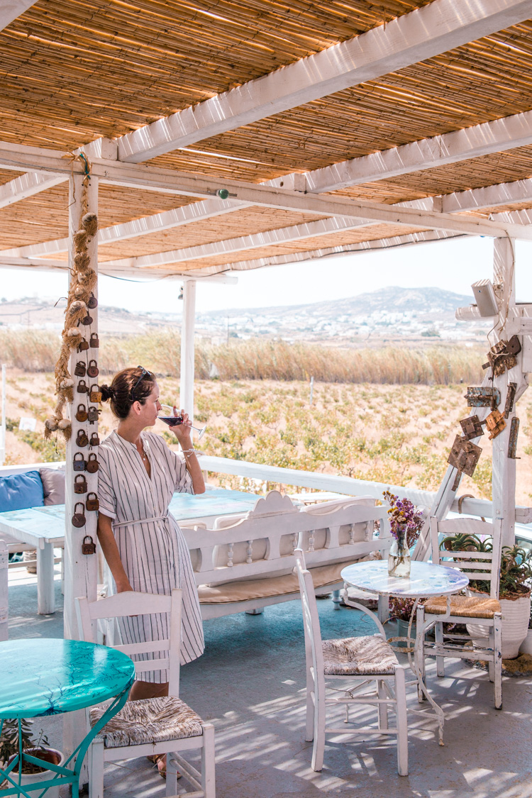 Vioma Organic Farm & Winery, Mykonos