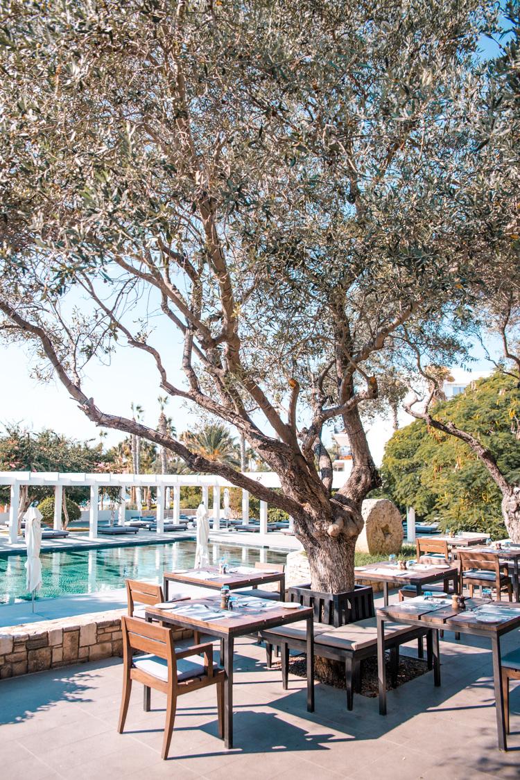 Ouzeri Restaurant at Almyra Hotel, Paphos