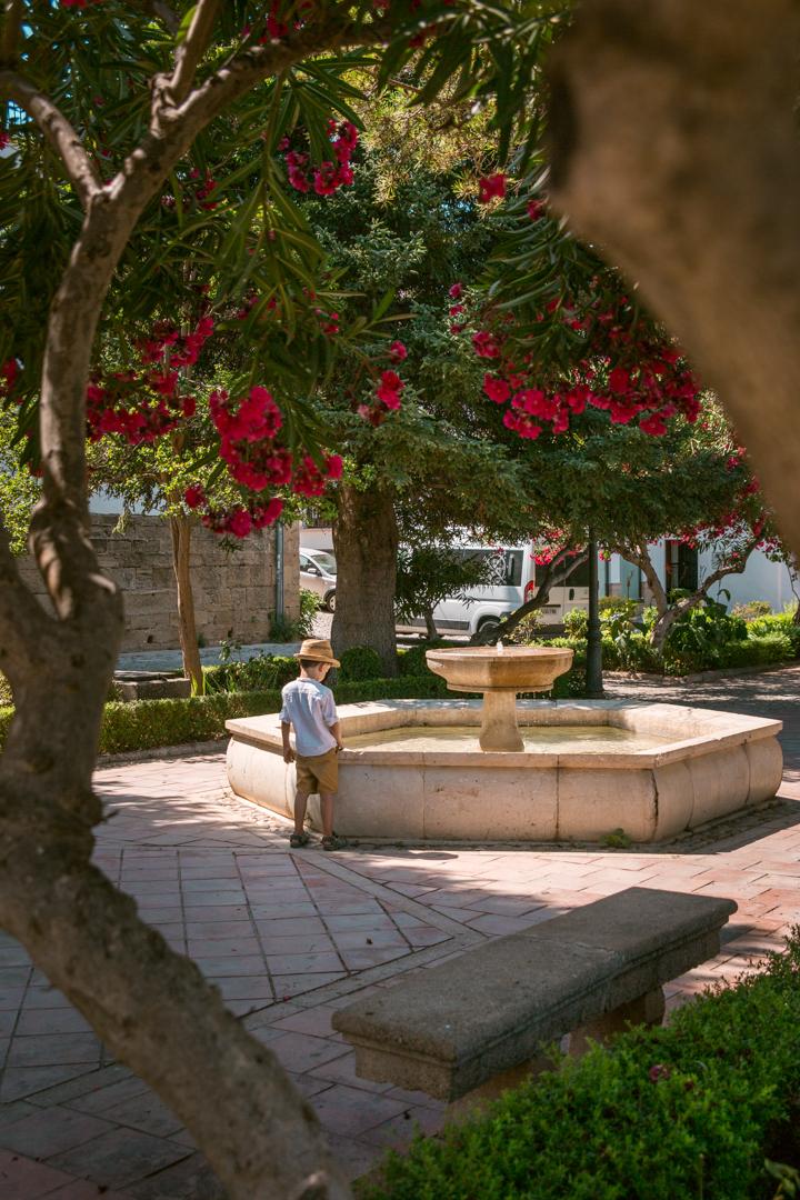 gardens near casa del bosco in ronda, andalusia