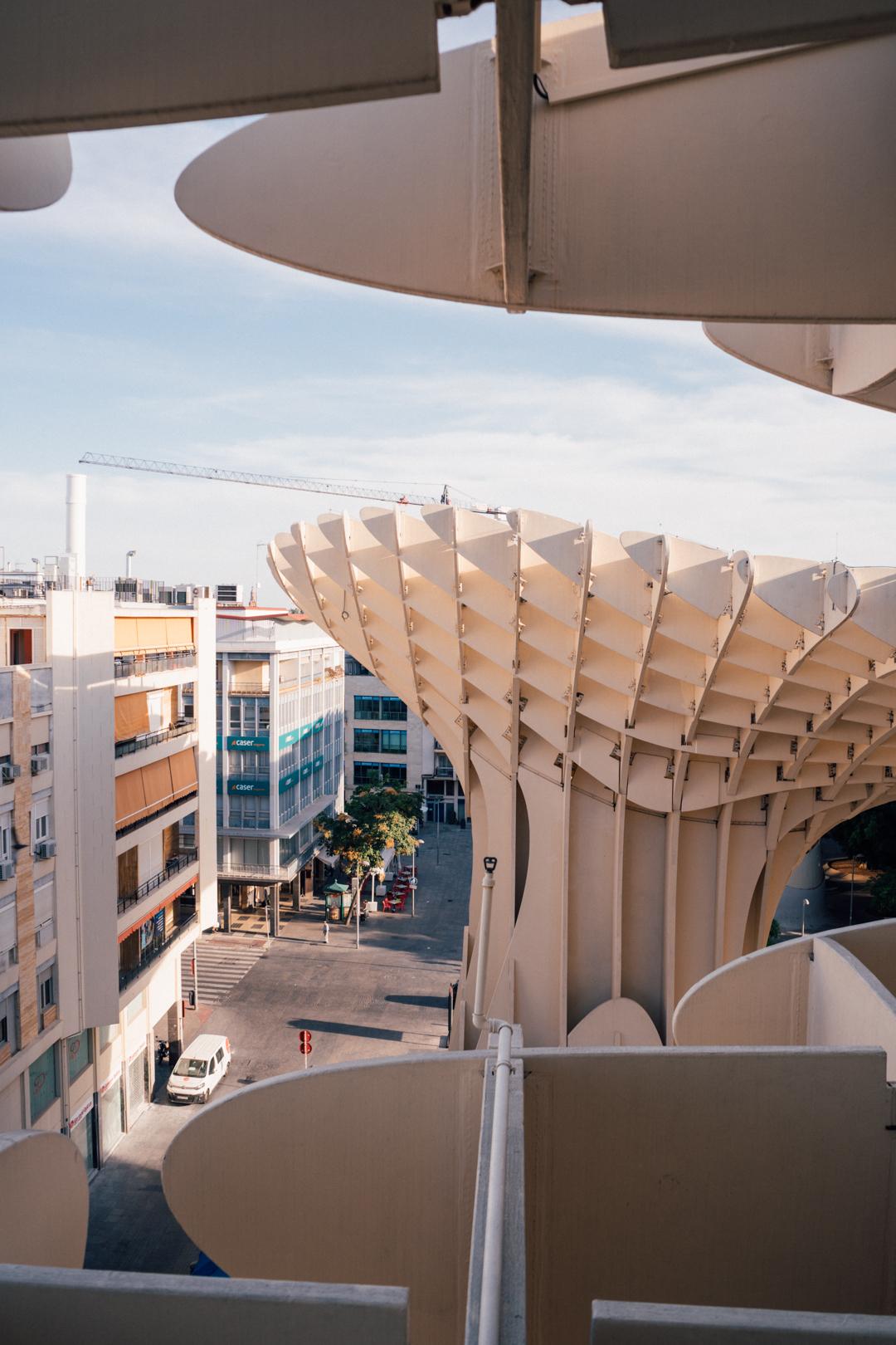 Setas de Sevilla, Spain