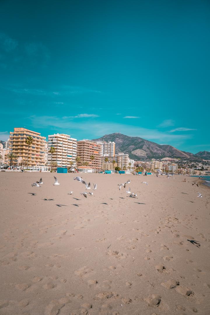 Fuengirola Beach day